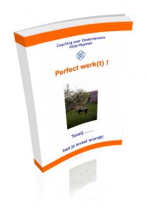 E-book Perfect werk(t)